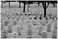 Rows of gravestones, Black Hills National Cemetery. Black Hills, South Dakota, USA ( black and white)