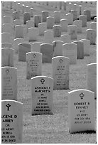 Rows of tombs, Black Hills National Cemetery. Black Hills, South Dakota, USA ( black and white)