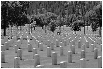 Black Hills National Cemetery. South Dakota, USA (black and white)
