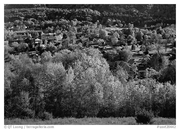 Village with trees in fall foliage. Vermont, New England, USA (black and white)