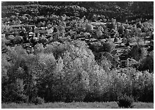 Village with trees in fall foliage. Vermont, New England, USA ( black and white)