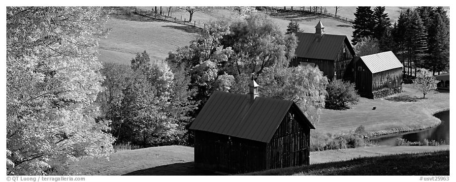 Pastoral barn scenery in autumn. Vermont, New England, USA (black and white)