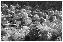 Village surounded by trees in brilliant autumn foliage. Vermont, New England, USA ( black and white)
