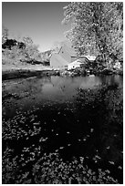 Pond and Sherbourne Farm in Hewettville. Vermont, New England, USA ( black and white)