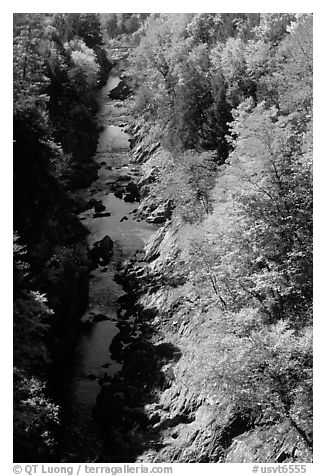 Quechee Gorge in fall. Vermont, New England, USA (black and white)