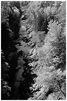 Quechee Gorge in fall. Vermont, New England, USA ( black and white)