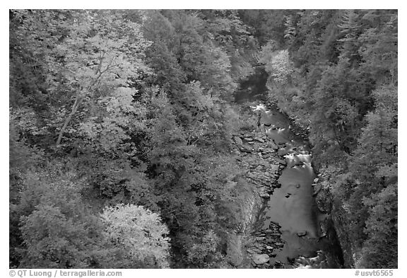 Quechee Gorge in autumn. Vermont, New England, USA (black and white)