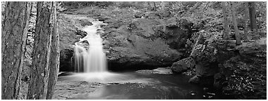 Forest scene with waterfall,  Amnicon Falls State Park. Wisconsin, USA (Panoramic black and white)