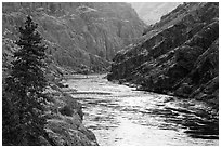 Wild portion of Snake River. Hells Canyon National Recreation Area, Idaho and Oregon, USA (black and white)