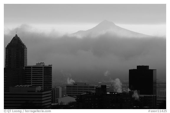 High rise buildings and Mt Hood at sunrise. Portland, Oregon, USA (black and white)