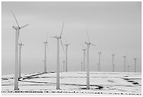Electricity-generating windmills. Oregon, USA (black and white)