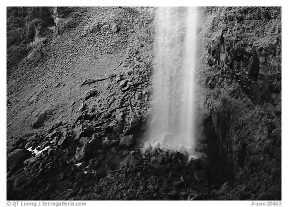 Mossy basin and waterfall base, Watson Falls. Oregon, USA (black and white)