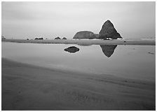 Triangular rock reflected in beach tidepool. Oregon, USA (black and white)