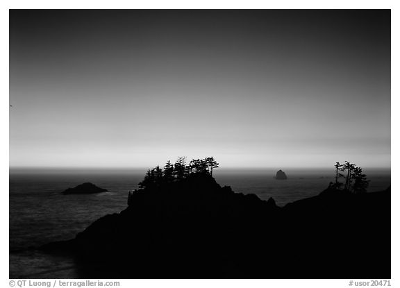 Headlands with trees at sunset. Oregon, USA (black and white)