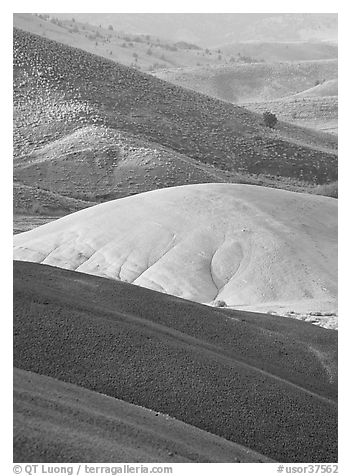 Weathered ash hummocks and sagebrush-covered slopes. John Day Fossils Bed National Monument, Oregon, USA (black and white)