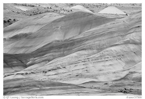 Weathered volcanic ash hills. John Day Fossils Bed National Monument, Oregon, USA (black and white)