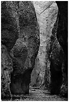 Narrow canyon, Oneonta Gorge. Columbia River Gorge, Oregon, USA (black and white)