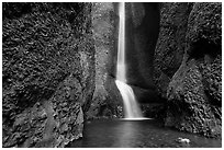Oneonta Falls. Columbia River Gorge, Oregon, USA (black and white)