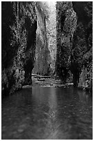 Stream and slot-like canyon walls, Oneonta Gorge. Columbia River Gorge, Oregon, USA (black and white)