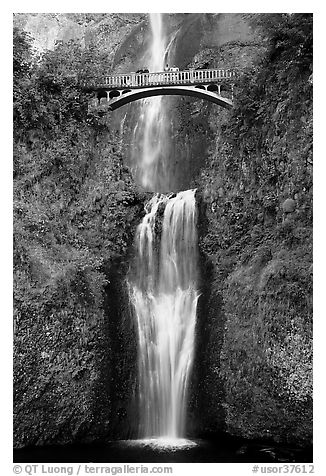 Lower Multnomah Falls and Benson Bridge. Columbia River Gorge, Oregon, USA (black and white)