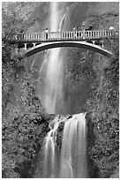 Benson Bridge and Multnomah Falls. Columbia River Gorge, Oregon, USA (black and white)