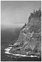 Seacliff near Cap Meares. Oregon, USA (black and white)