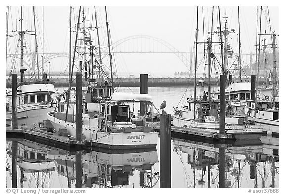 Commercial fishing boats and Yaquina Bay in fog. Newport, Oregon, USA (black and white)