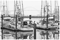 Commercial fishing boats and Yaquina Bay in fog. Newport, Oregon, USA ( black and white)