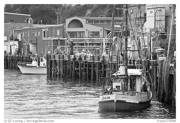 Fishing boats and pier. Newport, Oregon, USA (black and white)