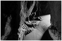 Light inside sea cave. Bandon, Oregon, USA (black and white)