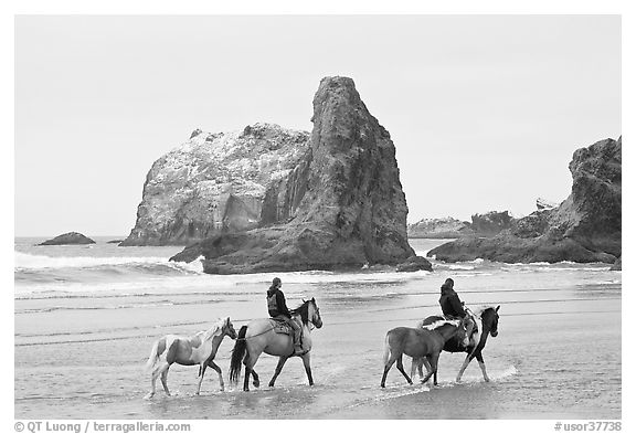 black and white beach photos. USA (lack and white