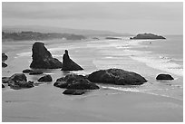 Sea stacks at Face Rock. Bandon, Oregon, USA (black and white)