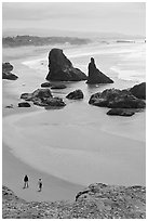 Beach and seastacks at Face Rock. Bandon, Oregon, USA (black and white)