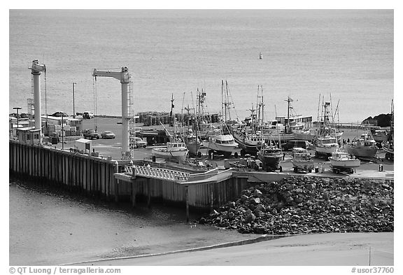 Pier, Port Orford. Oregon, USA (black and white)