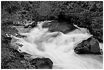 Water flowing from under lava tube. Oregon, USA ( black and white)