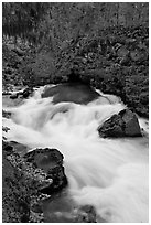 Water flowing from under basalt tube. Oregon, USA ( black and white)