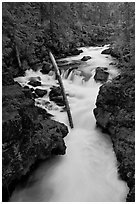 Rogue Gorge. Oregon, USA ( black and white)