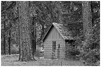 Union Creek red cabin in forest. Oregon, USA ( black and white)
