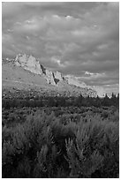 Sagebrush and ridge at sunset. Smith Rock State Park, Oregon, USA (black and white)