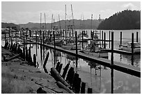 Boats along Siuslaw River, Florence. Oregon, USA ( black and white)
