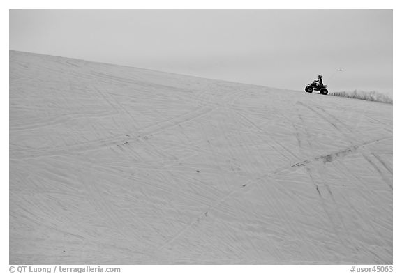 All terrain vehicle on dune crest, Oregon Dunes National Recreation Area. Oregon, USA (black and white)
