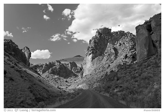 Road in Leslie Gulch. Oregon, USA (black and white)