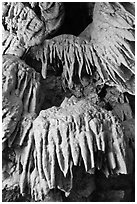 Stalactites, Oregon Caves National Monument. Oregon, USA ( black and white)