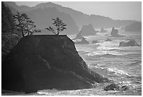 Coastline with rocks and seastacks, Samuel Boardman State Park. Oregon, USA ( black and white)