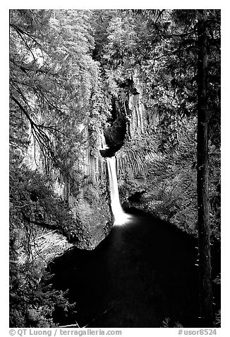 Toketee Falls. Oregon, USA (black and white)