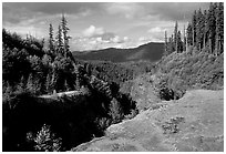 Forest and gorge, Lava Canyon. Mount St Helens National Volcanic Monument, Washington (black and white)