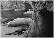 Sea caves and cliffs, Cape Flattery, Olympic Peninsula. USA ( black and white)