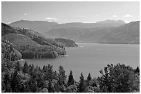 Riffe Lake. Washington ( black and white)