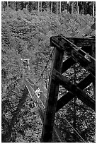 Suspension bridge over Lava Canyon. Mount St Helens National Volcanic Monument, Washington (black and white)