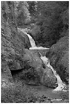 Muddy River cascades in Lava Canyon. Mount St Helens National Volcanic Monument, Washington ( black and white)